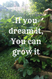 If you dream it,You can grow it